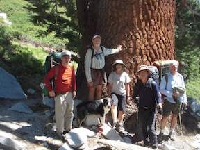 TRTA Five Weekends group at huge Western White Pine, Spooner to Big Meadow