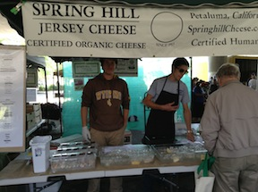 Spring Hill Jersey Cheese
