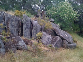 Granite Boulders and Buckeye