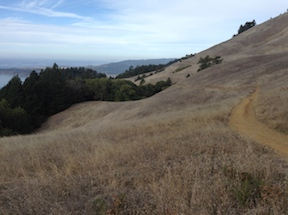 view north along Matt Davis Trail