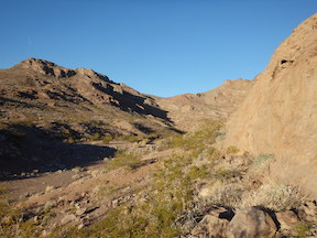 small wash on Amargosa Trail
