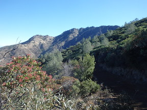 North Peak and toyon from the Prospectors Trail
